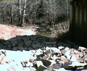 Mansker Creek Under the Bridge